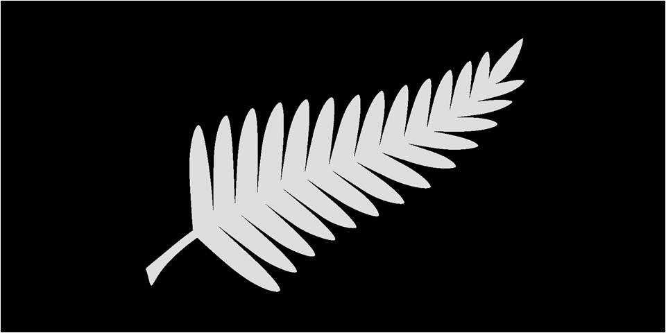nz-flag-large-silver-fern-on-black